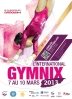 International-GYMNIX-2013_AFFICHE_finale